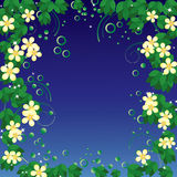 Flower frame. Royalty Free Stock Images