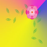 Flower of frame. On background Royalty Free Stock Photo
