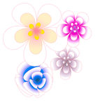 Flower of frame. On  background Stock Photos