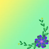 Flower of frame. On color background Royalty Free Stock Photo
