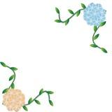 Flower of frame. On white background Stock Photo