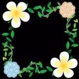 Flower of frame Royalty Free Stock Image