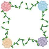 Flower of frame. On white background Stock Image