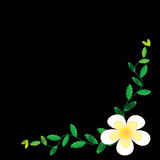 Flower of frame. On background Royalty Free Stock Images