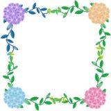 Flower of frame. On white background Stock Photos