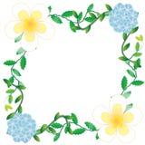 Flower of frame. Flower frame on white background Stock Photos