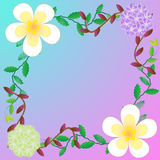 Flower of frame. On color background Stock Photos