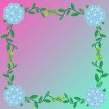 Flower of frame. On color background Stock Images