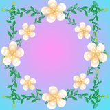 Flower of frame. On color background Stock Photo