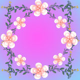 Flower of frame. On color background Stock Image