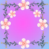 Flower of frame. On color background Royalty Free Stock Photos