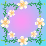 Flower of frame. On background Royalty Free Stock Image
