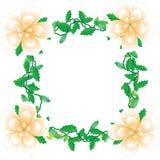 Flower of frame. On white background Royalty Free Stock Image