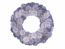 Flower frame. A frame made from blue flowers Stock Images