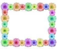 Flower frame. Isolated on white background Stock Image