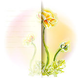 Flower frame background, watercolor Stock Photography
