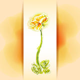 Flower frame background, watercolor Stock Photos