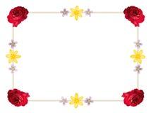 Flower Frame Border Stock Photography