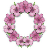 Flower frame border. Bouquet azalea background Stock Photo