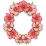 Flower frame border. Bouquet of pink pastel azalea Stock Image