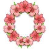 Flower frame border. Bouquet of pink pastel azalea Stock Image