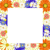 Flower frame border Stock Photos