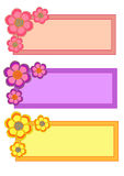 Flower Frame Collection Royalty Free Stock Photos
