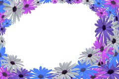 Flower frame with different color flowers royalty free stock photo