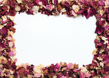 Flower frame of dried rose petals in warm colors stock photography