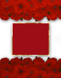 Flower frame. Floral border. Bouquet of poppy. Royalty Free Stock Images