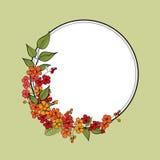 Flower frame. Floral border. flourish background. Royalty Free Stock Photos