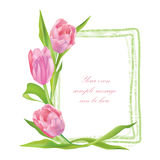 Flower frame. Floral border. Flower bouquet. Stock Photo