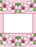 Flower frame. Floral border. Flowers of azalea Stock Photography