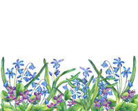 Flower frame of the Fragrant violets and Scilla bifolia blue. Stock Photos