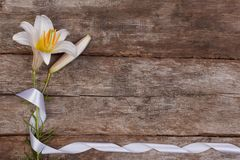 Flower frame of fragrant white lilies Stock Photo