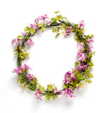 Flower frame isolated. On white background Royalty Free Stock Images