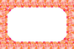Flower frame from orchids Stock Photo