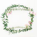 Flower frame of pink roses flowers and eucalyptus branches on white background. Flat lay, top view royalty free stock photo