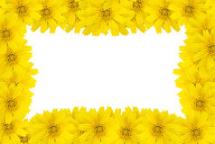 Flower frame with space for copy Royalty Free Stock Images