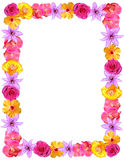 Flower Frame for Valentines & Mom's Day. Floral frame or border composed of multi-colored flowers including roses. Suitable for Easter, May Day, Valentine's Stock Image
