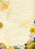 Flower frame on vat paper Stock Image