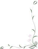Flower framework Stock Photography