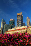 Flower on CBD. Flower in front of Central Bussiness District Singapore Stock Photography