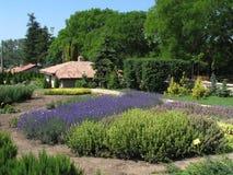 Flower Garden. A flower garden in green and violet Stock Image