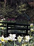 Flower Garden. Spring Flower Garden with bench Stock Photo