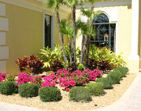 Flower Garden. Garden of flowers in corner near front entrance of home in tropics stock image