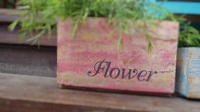 Flower garden basket Stock Image