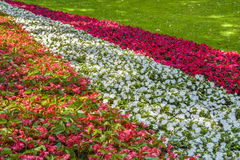 Flower-Garden Bed stock image