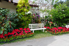 Flower garden bench. Vintage bench in flower garden Stock Image