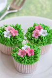 Flower garden cakes Stock Photography
